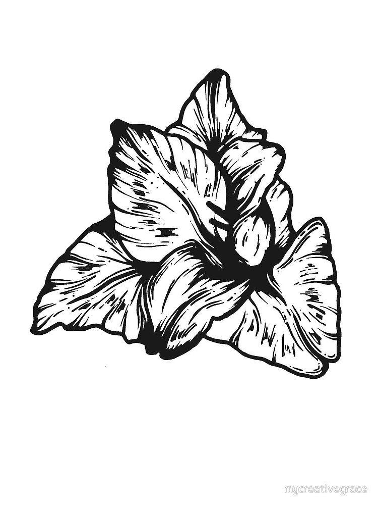 750x1000 Gladiolus August Birth Flower