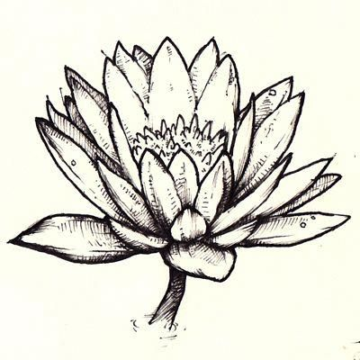 400x400 lotus flower drawing pen drawing of a lotus flower for lotus