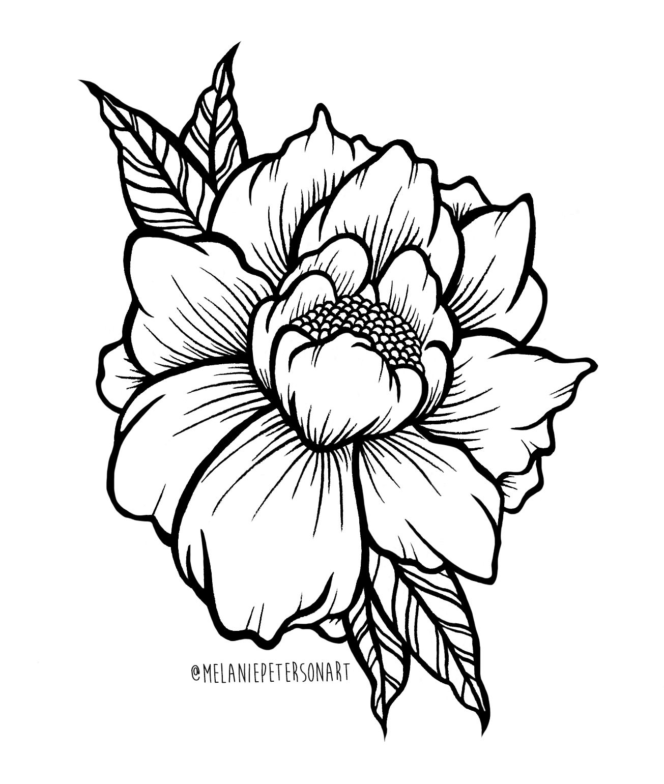 1305x1541 Peony Illustration Done Using Copic And Micron Pens