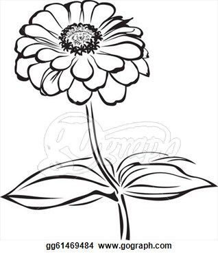 318x370 Pix For Gt Zinnia Flower Drawing Working In A Series Studies