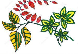 300x210 Abstract Pen Drawings Of Flowers Abstract Flower Pattern Line