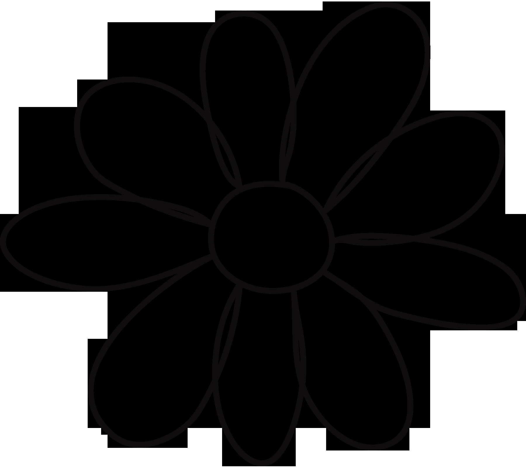 Flower Petals Drawing