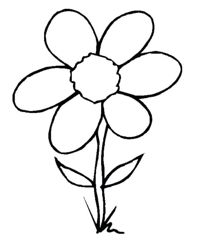 699x828 flower outline printable simple flower outline simple flower