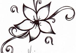 300x210 hawaiian flower drawing how to draw an hawaiian flower