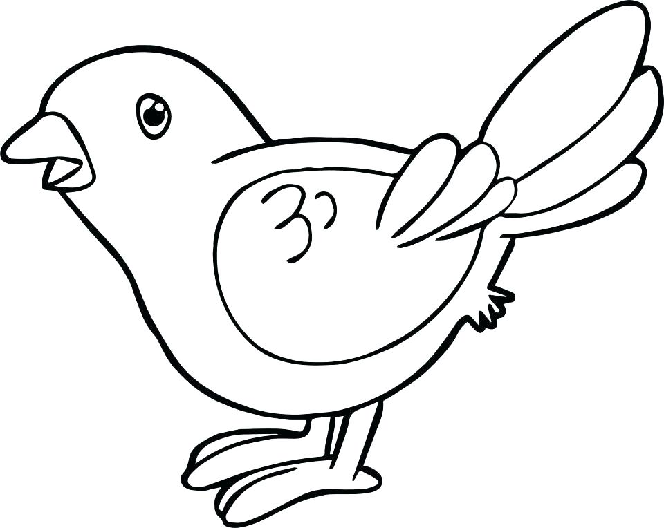 960x764 Coloring Pages For Adults Printable Easy Kids Disney Bird Sheets