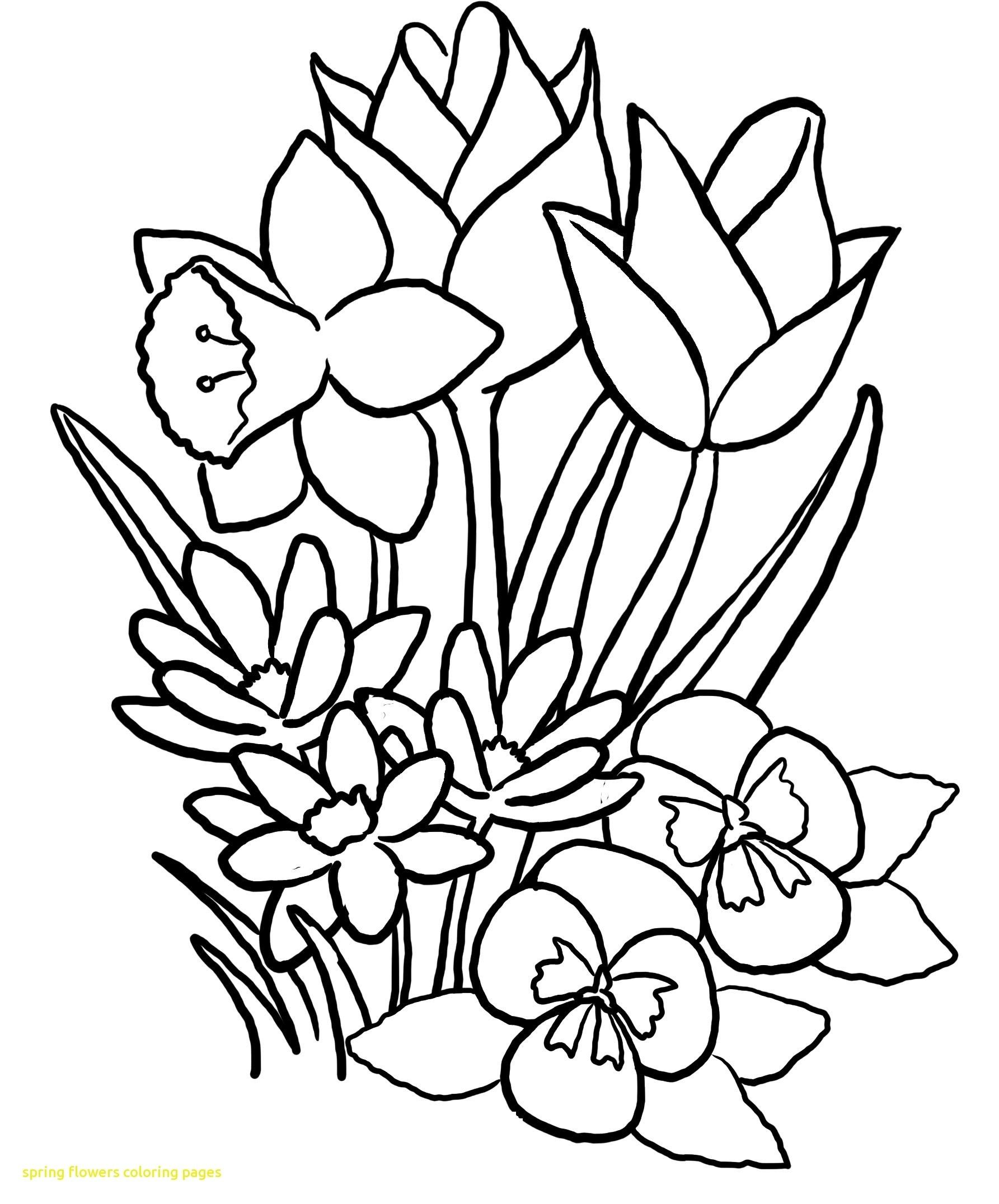 1785x2152 Coloring Pages Of Flowers And Birds For Mothers Day Butterflies