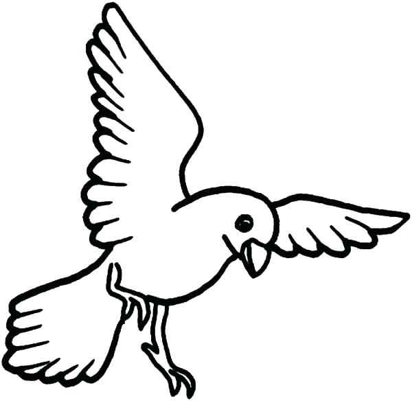 600x584 Sumptuous Design Inspiration Coloring Pages Of Birds And Flowers
