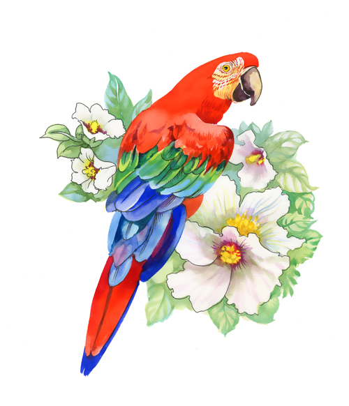 500x582 Watercolor Drawn Birds With Flowers Vector Design Free Download