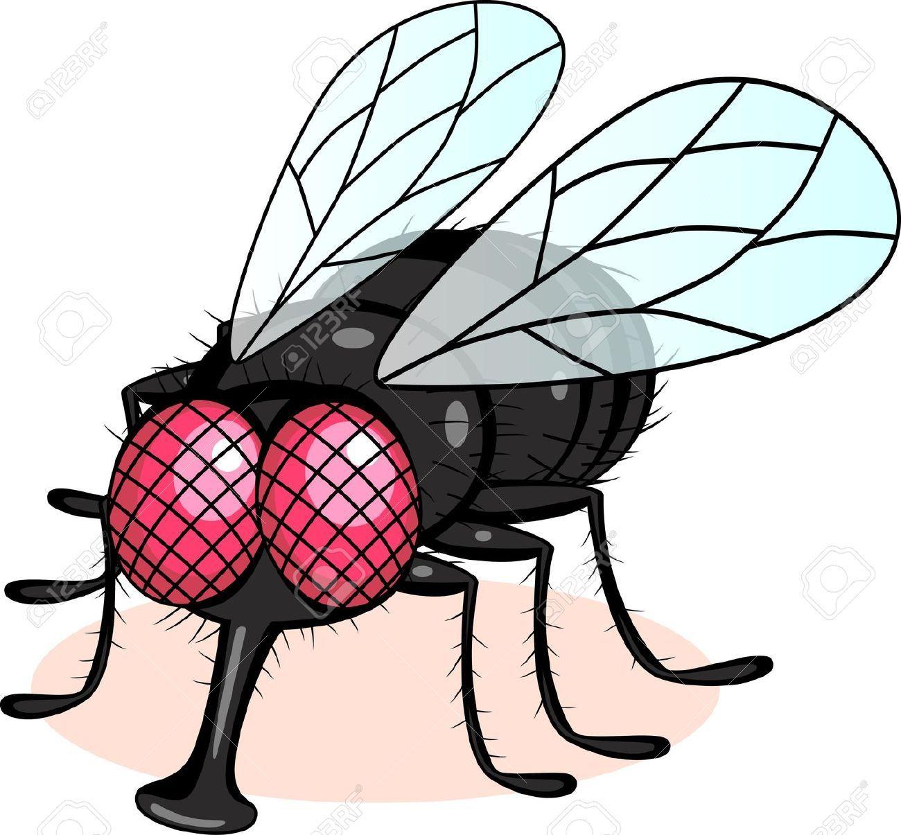 1300x1205 fly cartoon in thegioidongvat fly drawing, cartoon