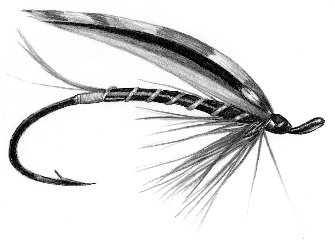 1091x800 Drawing Flies Fly Fishing For Free Download