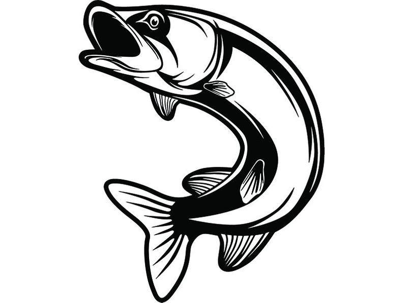 794x597 Trout Fish Fly Fisherman Fresh Water River Fishing Etsy