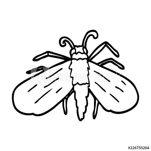 500x500 Line Drawing Cartoon Fly