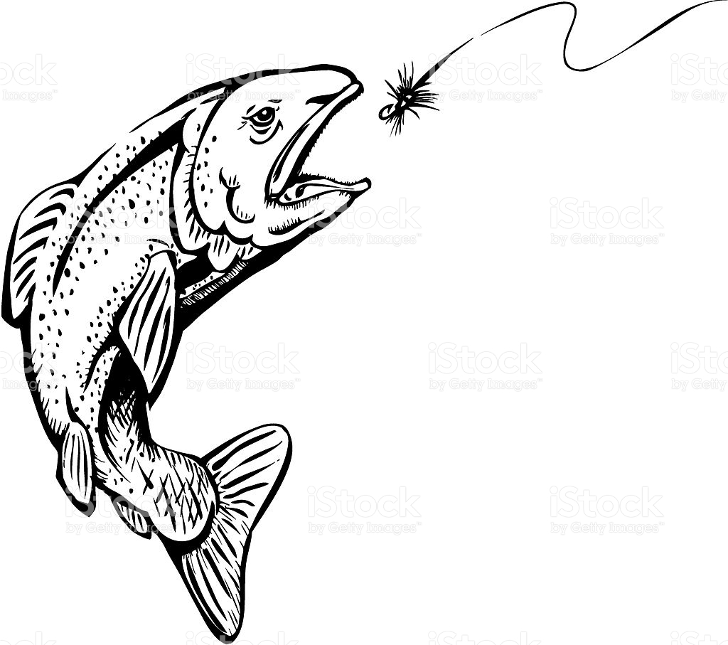 1024x907 Fly Fishing Clip Art Black And White