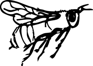 300x213 Flying Bee Drawing Clip Art