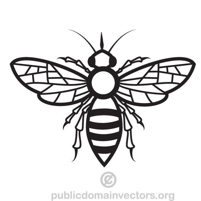 660x660 Bee Vector Drawing Free Vectors Ui Download