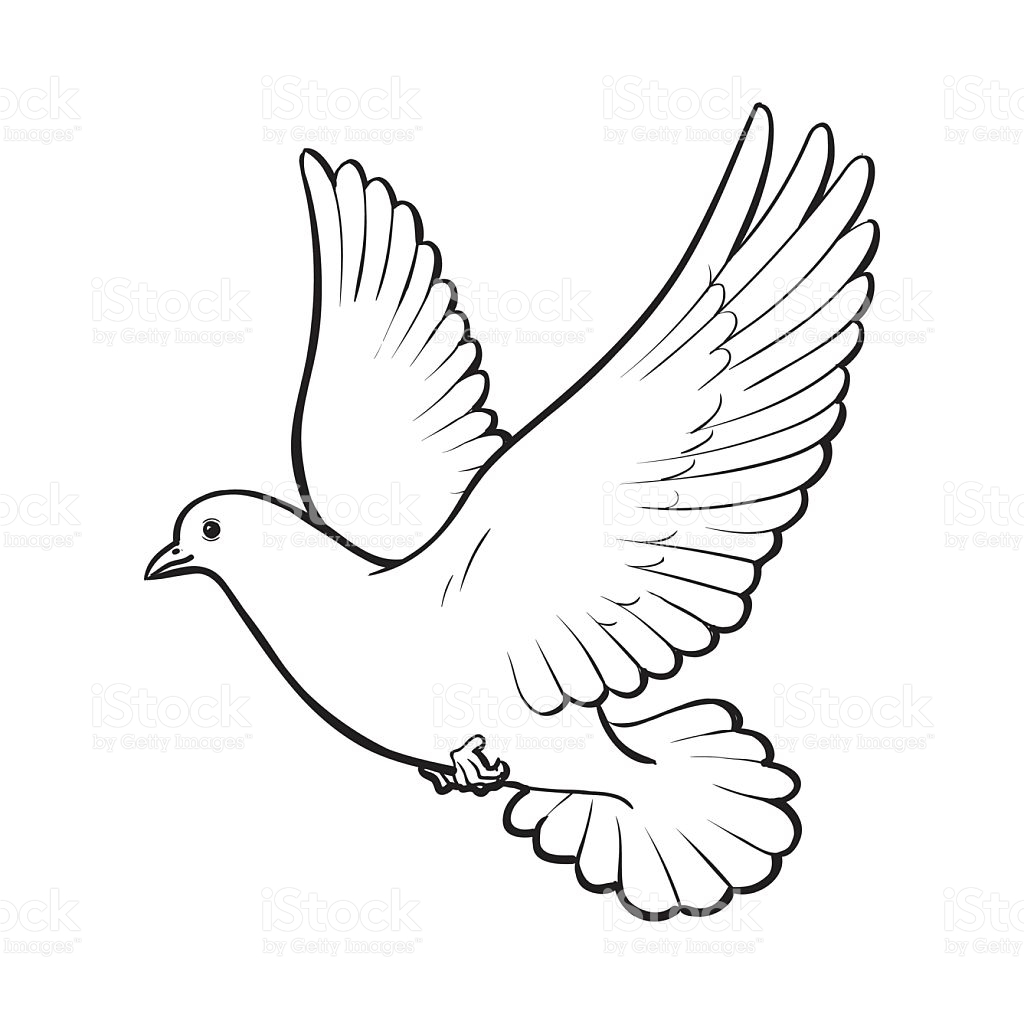 1024x1024 Heavenly Drawing Dove For Free Download