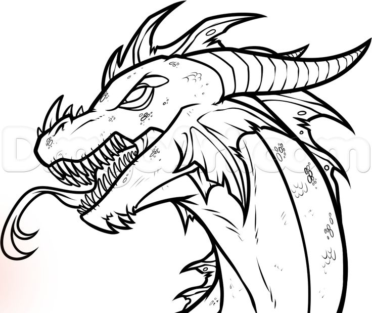 736x619 Dinosaur Drawing Dragon For Free Download