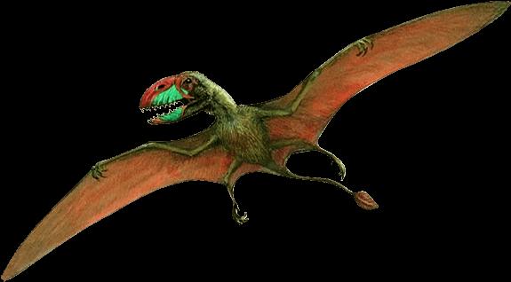 575x318 Transparent Bones Dinosaur Transparent Png Clipart Free Download