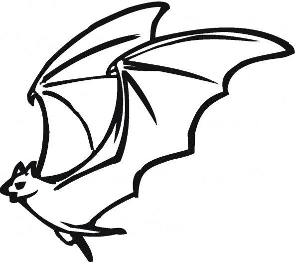 596x525 Flying Bat Coloring