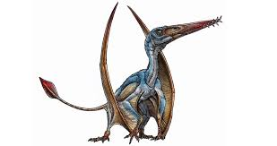 309x163 Are There Flying Dinosaurs In Nc One Woman Says She's Seen Them