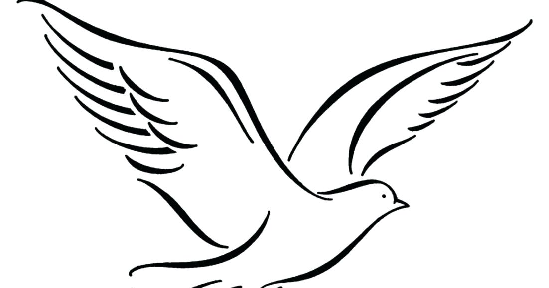 1102x578 dove drawings peace dove dove drawing simple