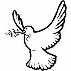 236x236 best dove drawings images dove drawing, peace dove, birds