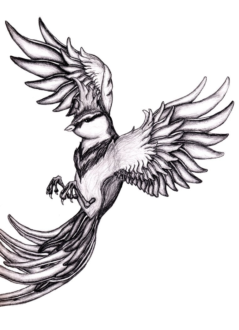 762x1049 Draw Flying Bird Drawing Free Download Clip Art On Birds Drawings