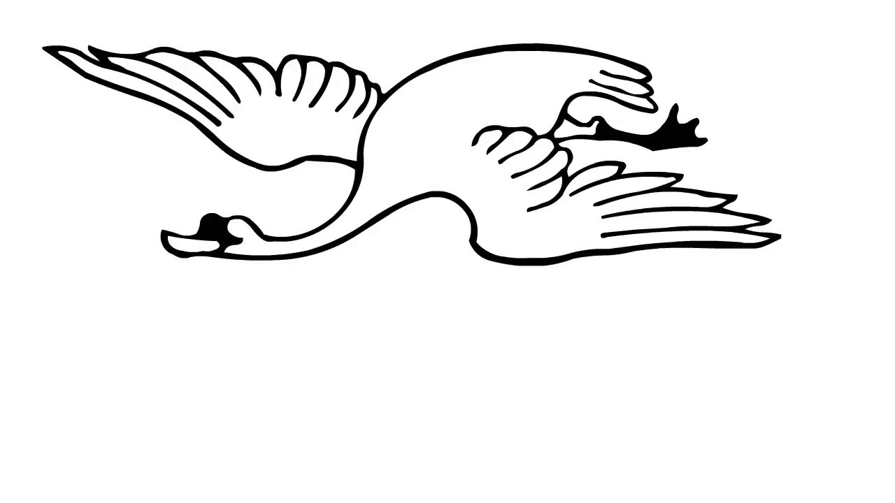 1280x720 How To Draw Flying Swan