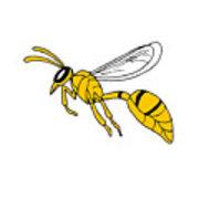 180x180 Wasp Flying Drawing Digital Art
