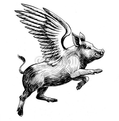 395x400 Flying Pig Black And White Ink Illustration Buy Photos Ap