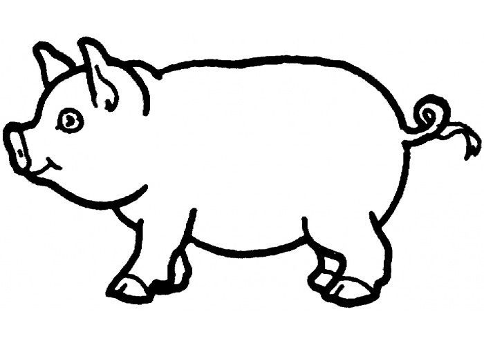 700x500 Awesome Flying Pig Coloring Sheet