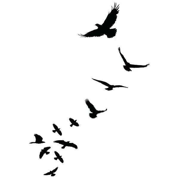 600x600 seagull outline bird fowl silhouette outline seagull fly hover fly