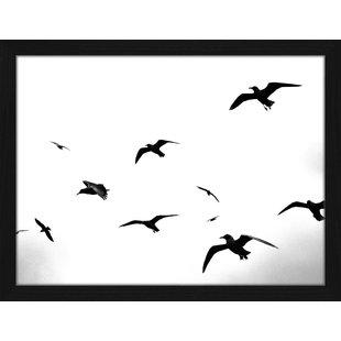 310x310 Seagull Wall Art You'll Love