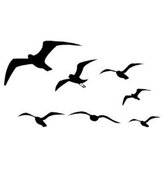 570x590 seagull flying wall decal bird decal flying bird decal dorm room
