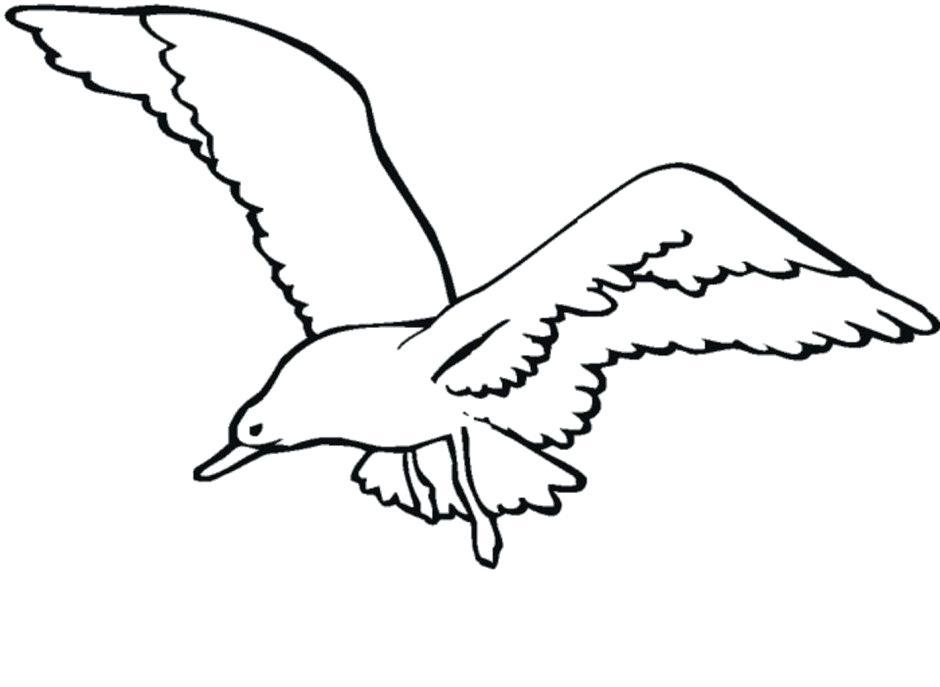 940x687 Seagull Clipart Mattlatham