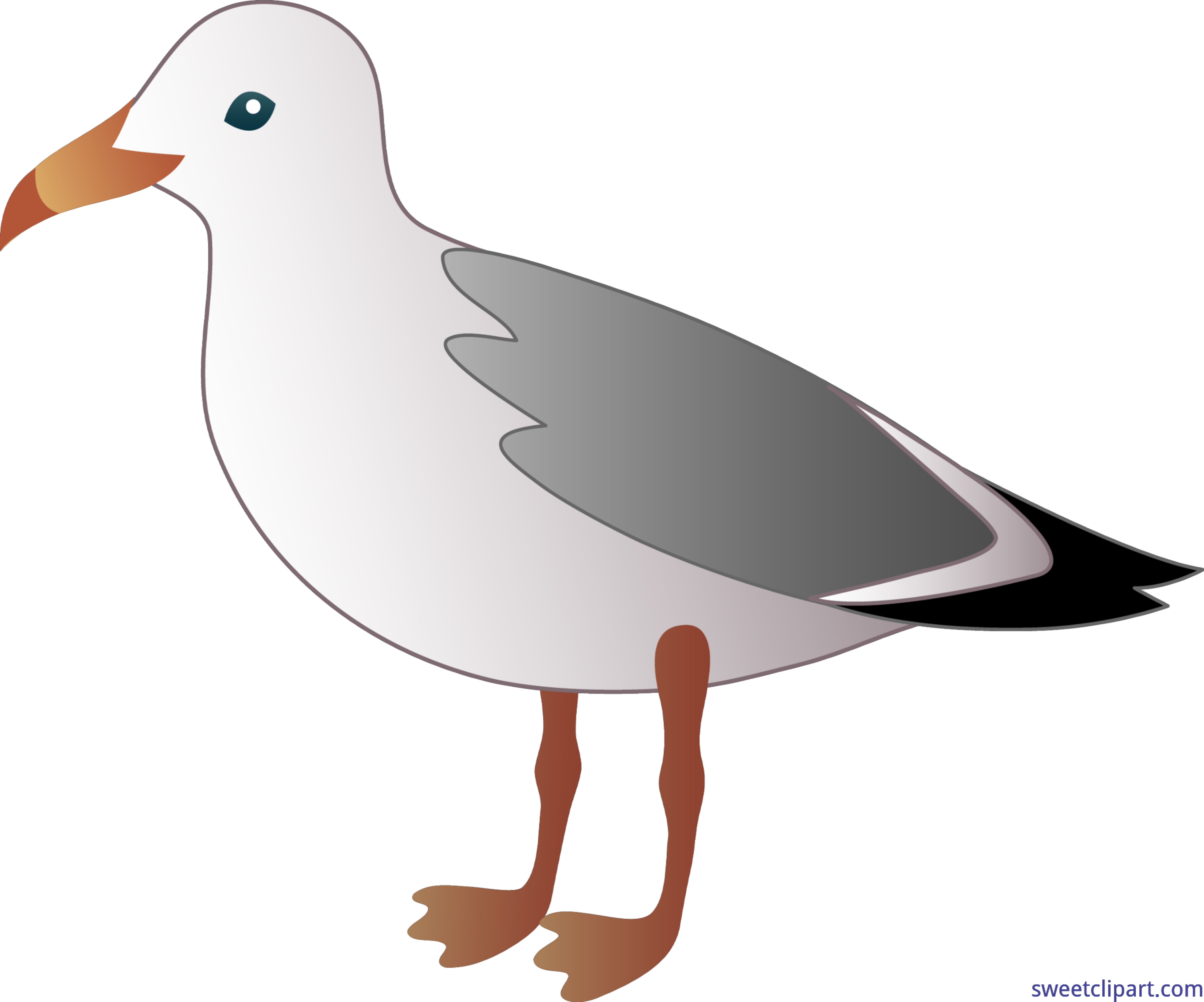 7458x6204 Collection Of Free Seagull Drawing Flying Download On Ui Ex