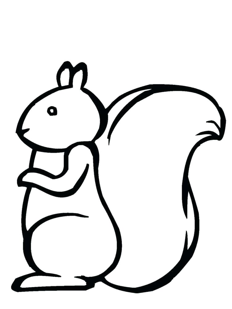 752x1000 coloring pages squirrel squirrel coloring pages squirrel coloring