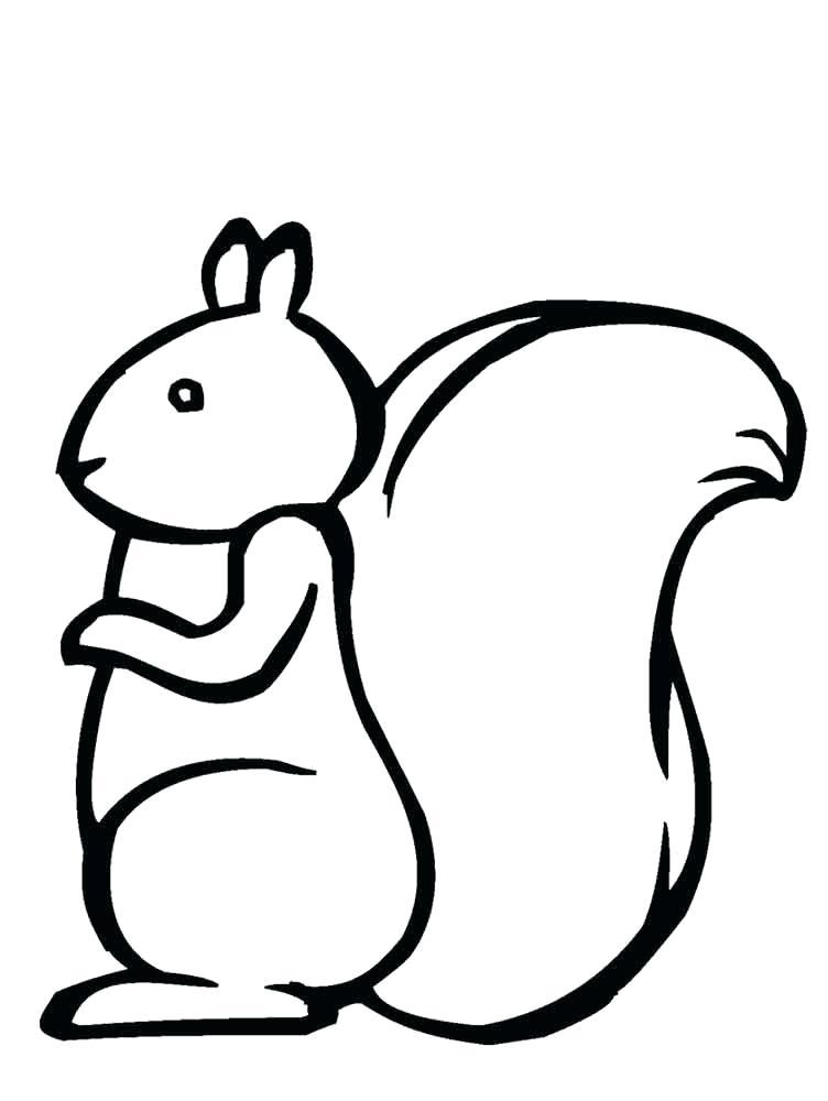 752x1000 coloring pages squirrel squirrel coloring pages squirrel coloring