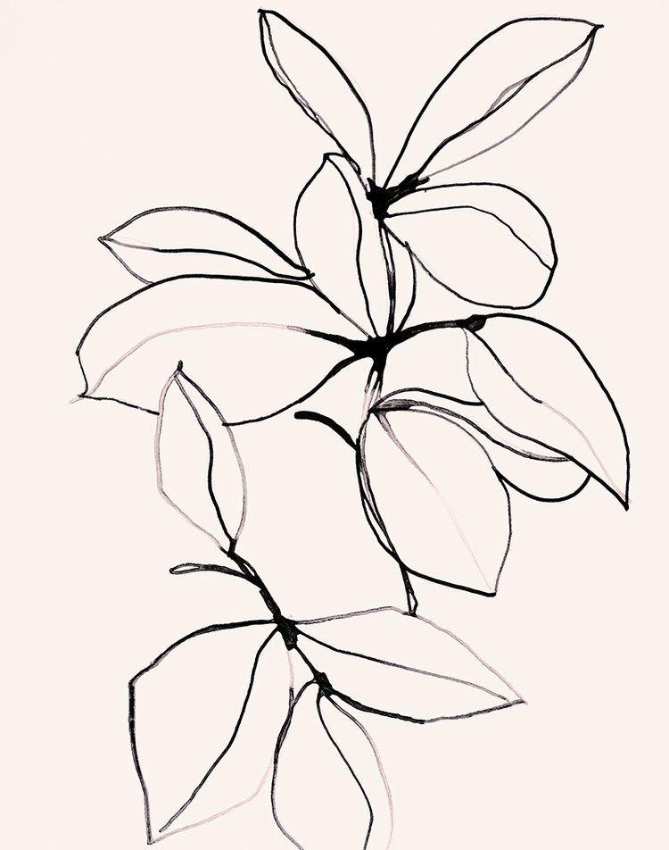 750x952 Foliage