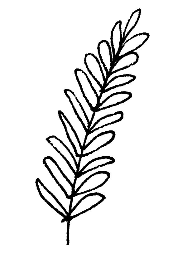 600x814 Drawn Foliage Tiny Leaf Free Clip Art Stock Illustrations