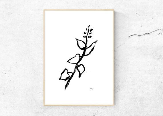 570x407 Olive Branch Poster Digital Download Line Drawing Etsy