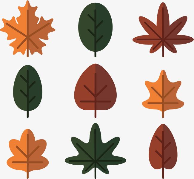 650x599 Vector Hand Painted Foliage Template, Leaf, Vector Diagram, Hand