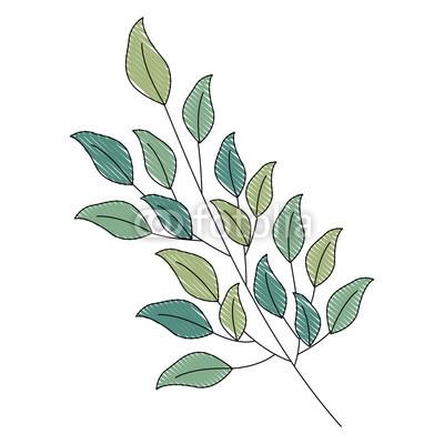 400x400 Branch Foliage Leaves Natural Botanical Vector Illustration
