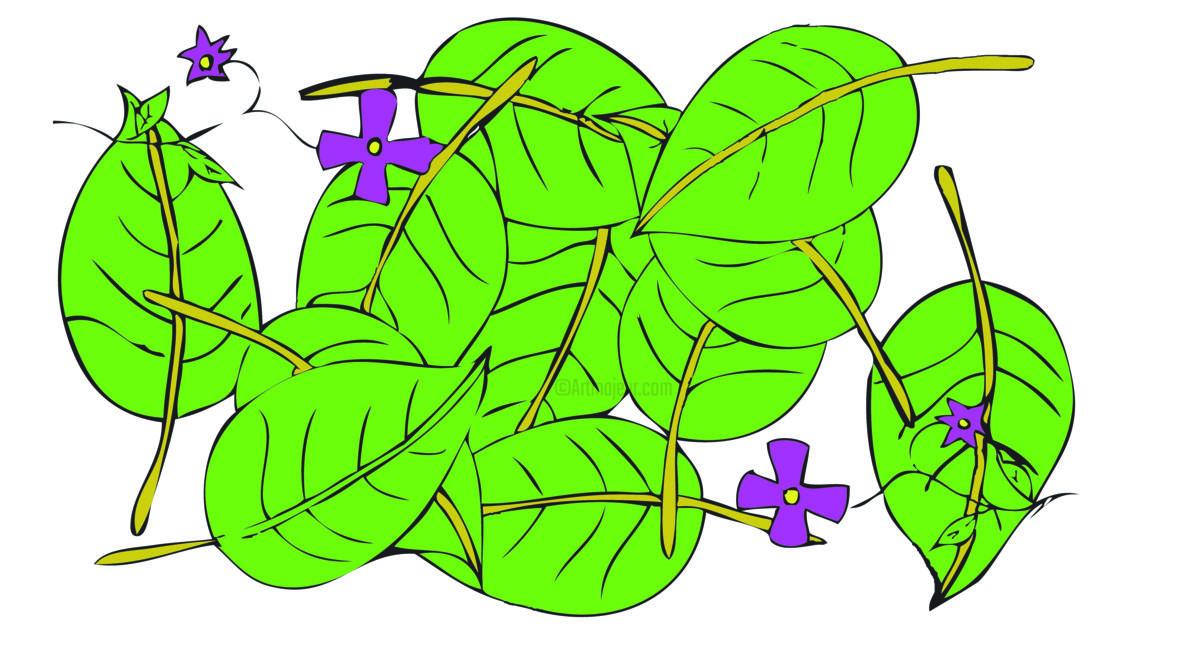 1200x649 Foliage