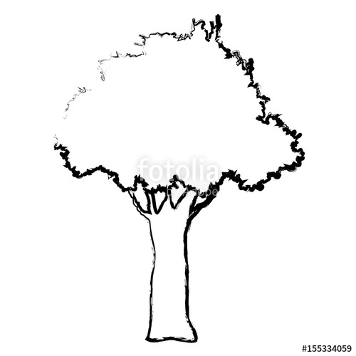 500x500 Natural Tree Foliage Branch Trunk Sketch Vector Illustration