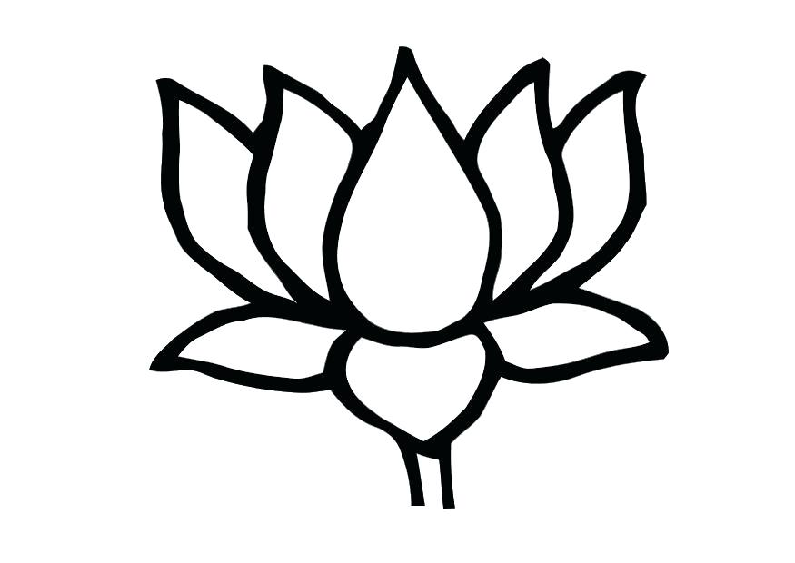 875x620 outline of a lotus flower lotus flower outline drawing of lotus