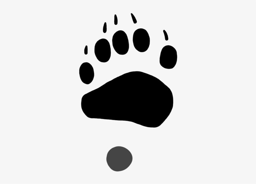 820x589 Drawing Footprints Bear Footprint