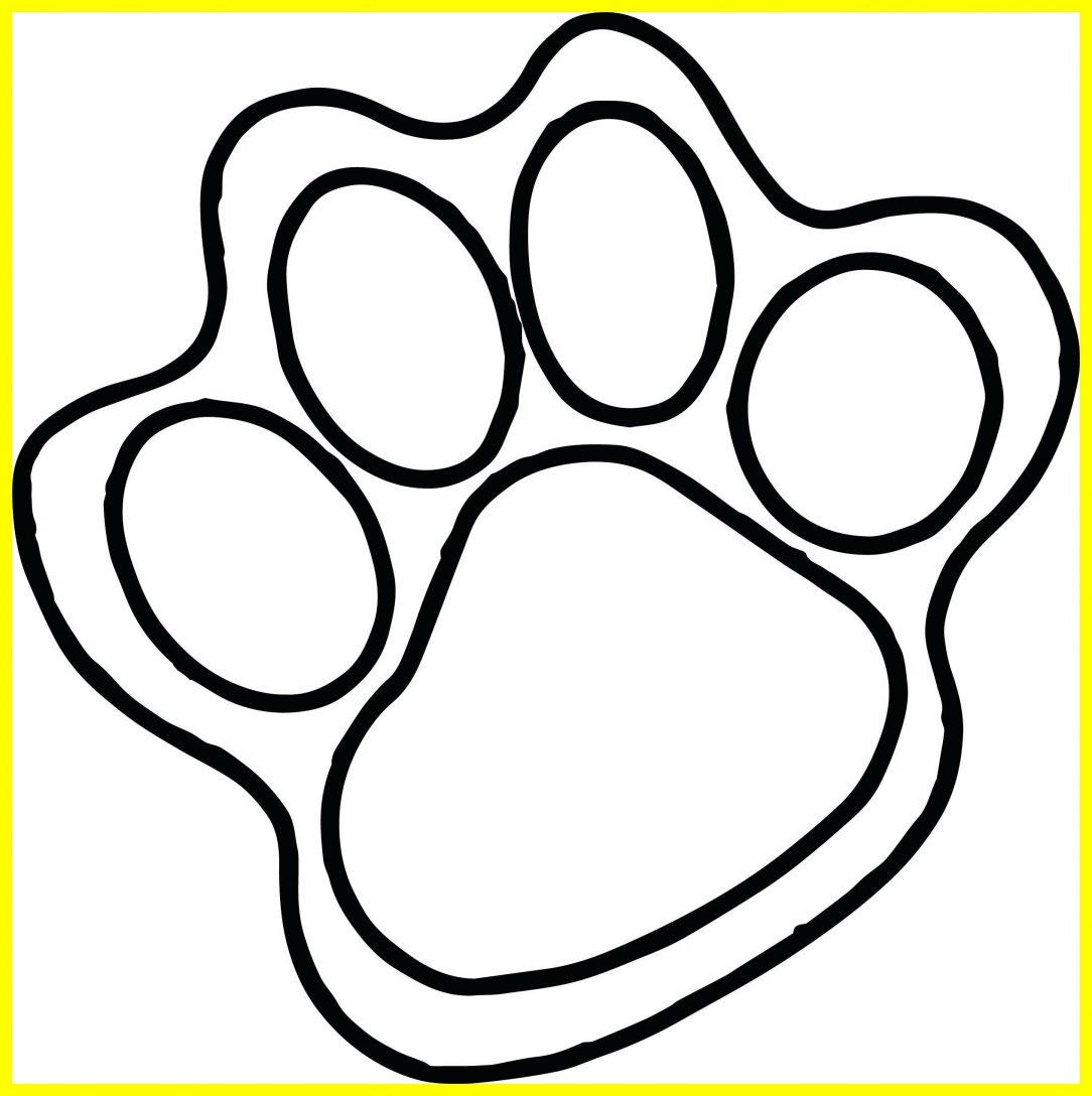 1084x1088 Cat Footprint Drawing Paw Pad Tutorial A Print Easy Carmi Chaelinn