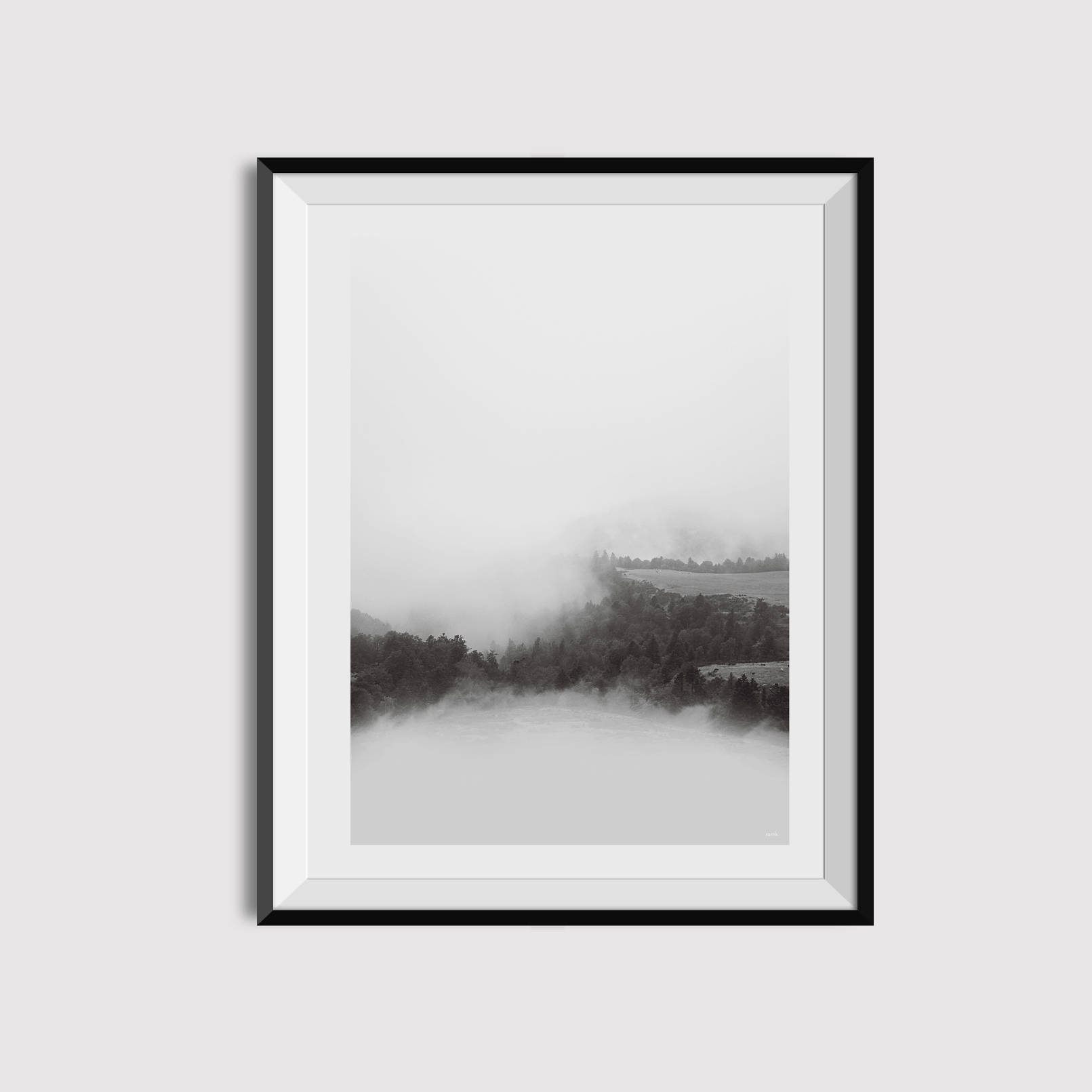 1611x1611 Black And White Landscape Photography Forest Minimalist Etsy