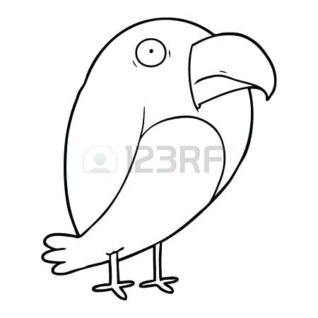 450x450 Simple Crow Drawing Magpie Crow Illustration Vector Bird Color